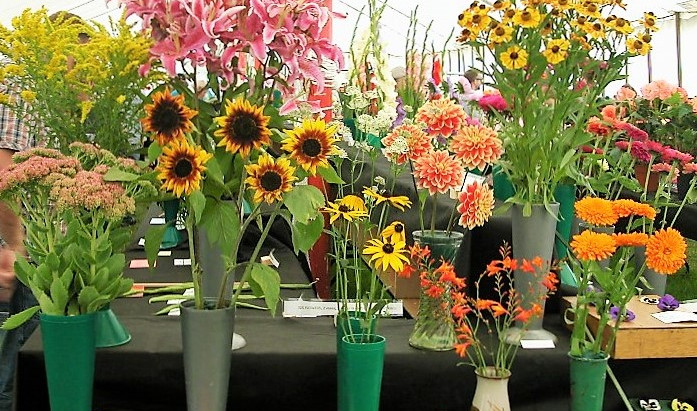 Flowers and Pot Plants for showing, and Judging