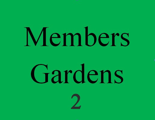 Members Photos