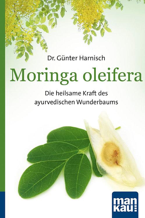 Moringa olifeira - die heilsame Kraft des ayurvedischen Wunderbaums