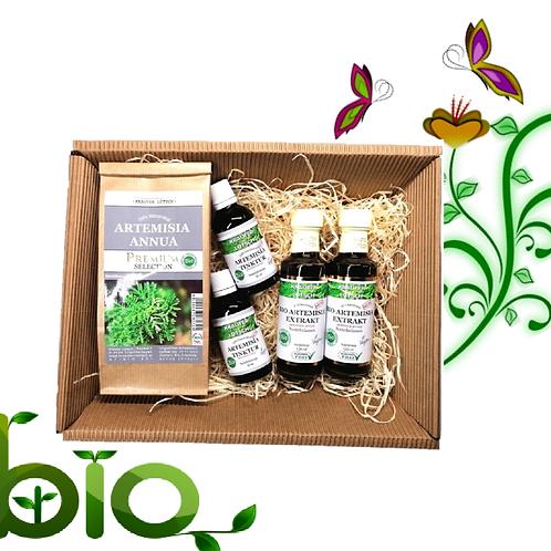 Bio Artemisia Annua Geschenkbox
