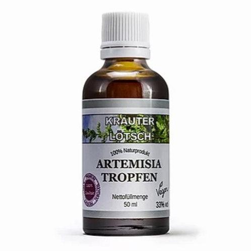 Artemisia annua Tinktur Konv.
