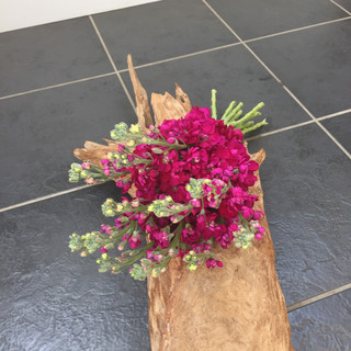 Bright pink bouquet - Stocks