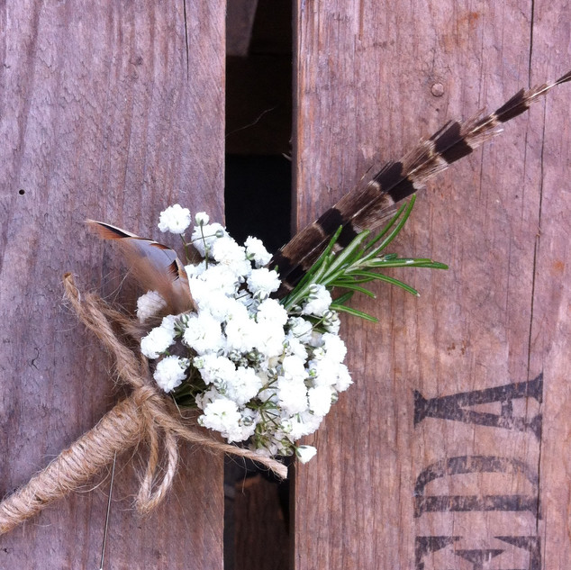 Gypsophila & feather buttonhole