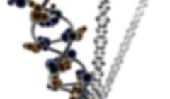 biochemical_main.jpg