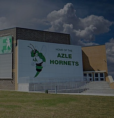azle-high-school-hornet%20(2)_edited.jpg