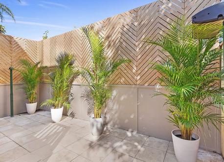 Bronte house - garden