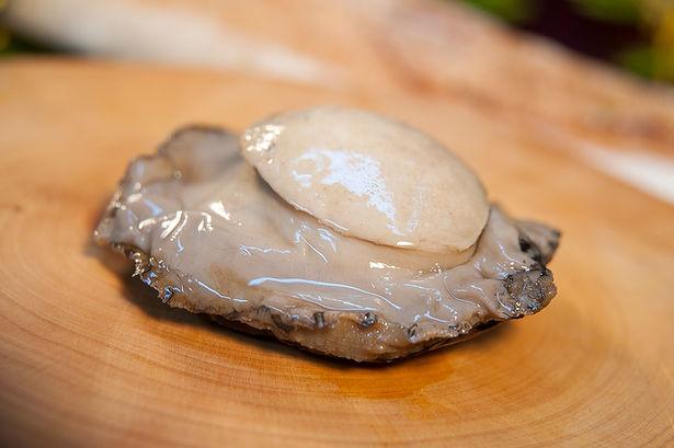 Australian Wild Caught Blacklip Abalone