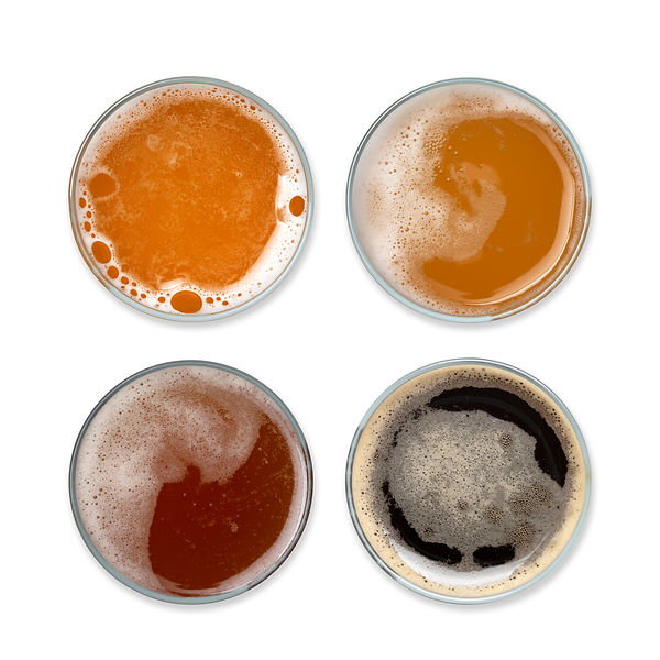 Abalone Craft Beer Range in Glass - 1 (E