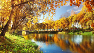 SR2 Autumn