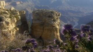 SM5 Desert Mountain