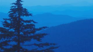 SM10 Smoky Mountains