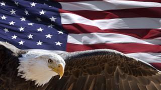 SA3 Flag and Eagle