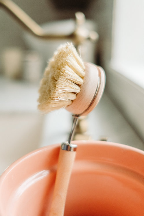 Replacement Brush Head for Long Handle Dish Brush