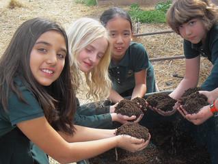 Potting Soil Starts the Season