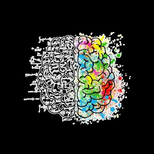 brain%20_edited.png
