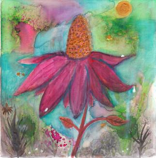 Echinacea Healing