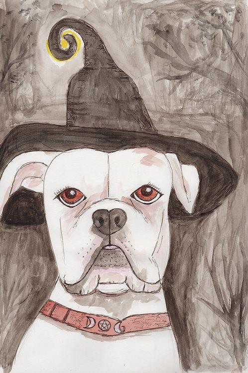 Halloween dog