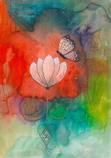 Butterfly & Lotus