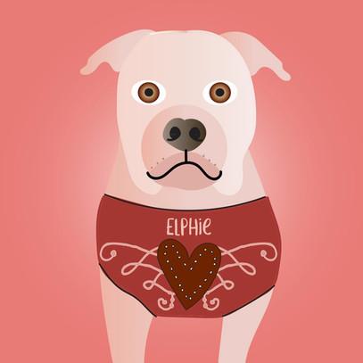 Elphie the bulldog