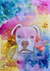 My bulldog is my universe