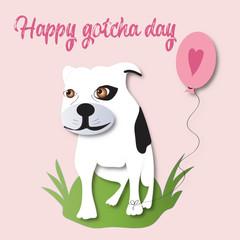 Happy Gotcha day