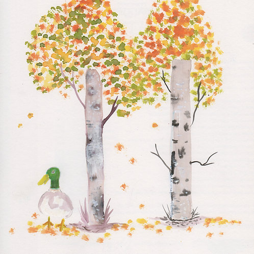 The birch and the duck