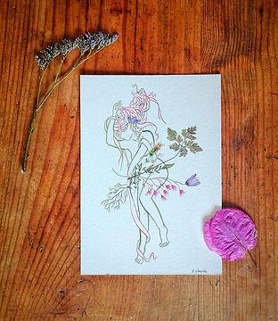 elisa-cherrie-illustration-.jpg