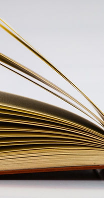 plain bright book image.jpg