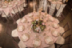 Shelby Wedding - Aerial Table.jpg