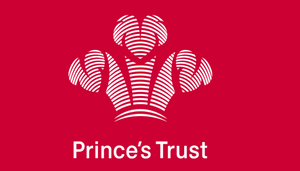 Prince's Trust Wellvivid 2018 Charity of the Year