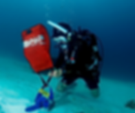 Search and Recovery Diver.png