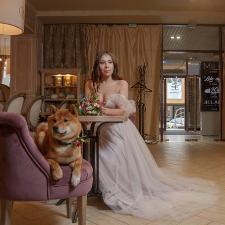 Проект невеста-блогер