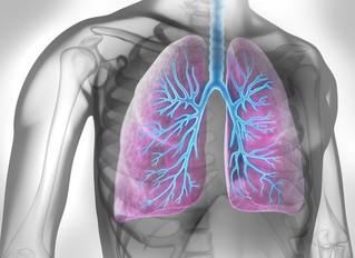 OBÉSITÉ : Elle rétrécit les voies respiratoires et accroît le risque d'asthme
