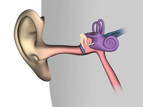 Lavage d'oreille: 6 avril 2021 à 17h00