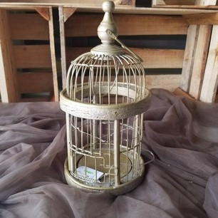 Gold Birdcage -$4 (QTY 1)