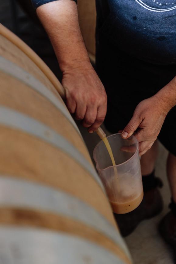 Barrel samples