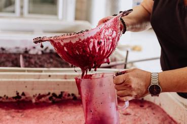Foot Stomp Red Wine Samples