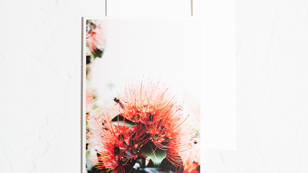Bloom Blank Card