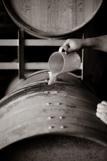 Barrel samples 2