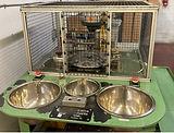 powder-metal-assembly-equipment