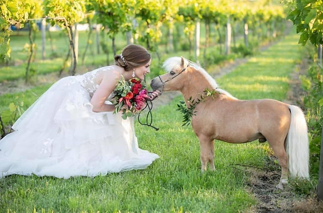 Hawk with bride.jpeg