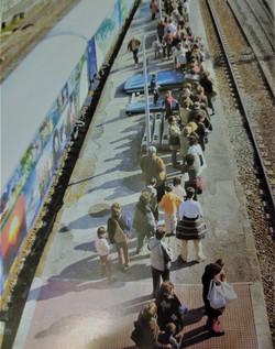 Tren del Medio Ambiente