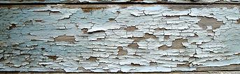 lead paint renovator