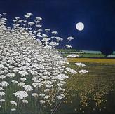 Phil Greenwood - Moon Lights