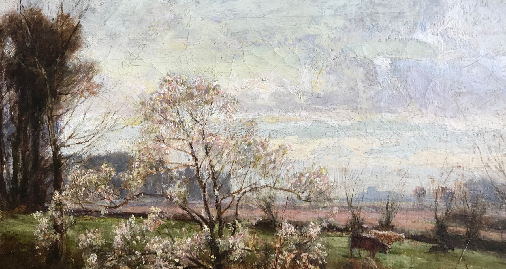 George Gray, Oil on Canvas