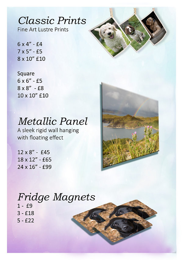Price List - New - Page 1.jpg