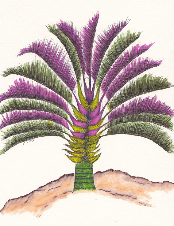 Triangle Palm.jpg