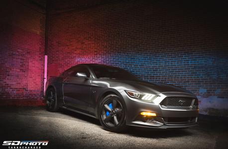 TS_Mustang-1.jpg