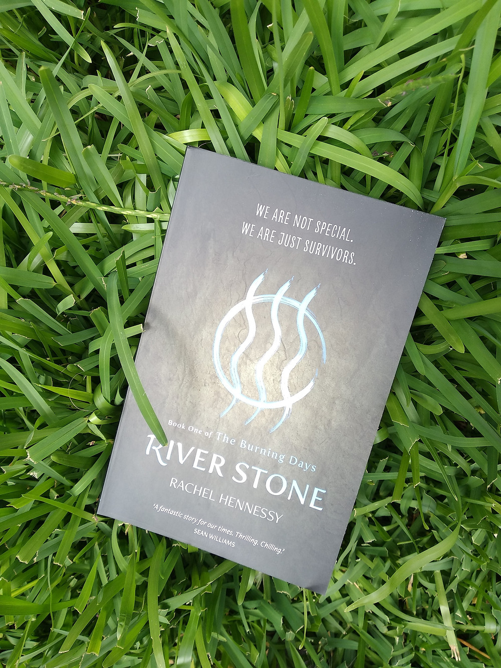 River Stone on grass