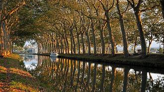 paysage canal.jpg